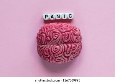 Human brain with the word panic. Mental health concept