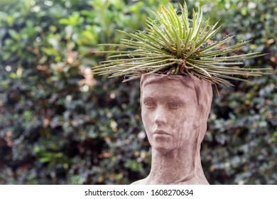 human bust with a potted plant as a spikey hairstyle of succulent cacti leaves