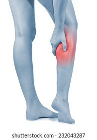 Human Calf pain with an anatomy injury caused by sports accident or arthritis as a skeletal joint problem medical health care concept.