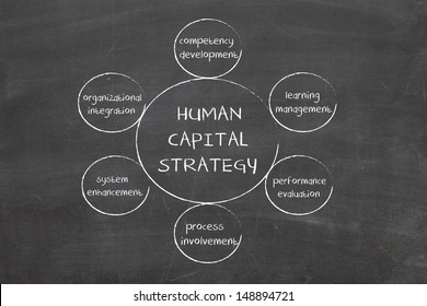 Human capital business diagram management strategy concept chart