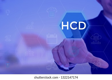 Human Capital Development - business concept