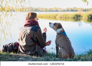 Human communicating with dog. Young dog sits and listens to her female owner in beautiful nature near a lake.