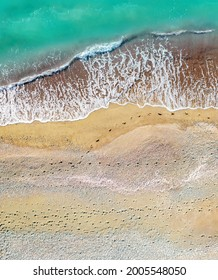 Human and dog footprints on a sandy shore along the sea with breaking waves, aerial vertical shot directly above
