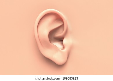 Human ear close up without any hair surrounding