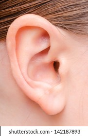 human ear image of a young woman close up