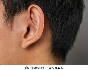 human ear macro close-up shot