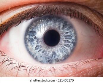 Human eye close-up detail