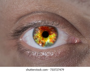 The human eye closeup. The reflection of the fire. The concept of human health, fire, ecology