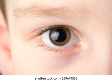 Human eye looking directly into camera.