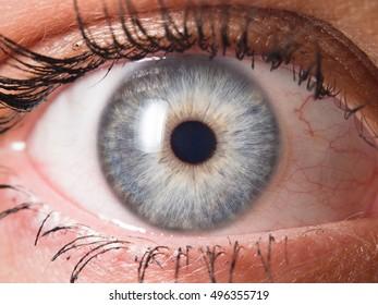 Human eye macro detail