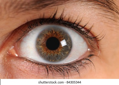 A human eye is staring in the camera