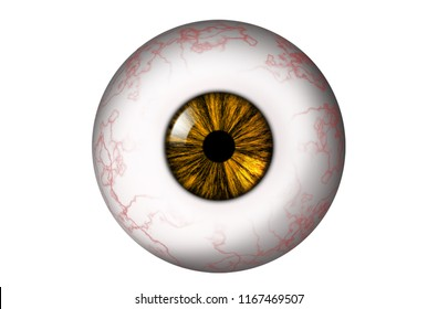 Human eyeball with red veins and yellow iris on a white background. Bitmap illustration