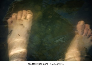 human feet in the water. fish swim around the legs and clean the skin. rocks and silt at the bottom of the river