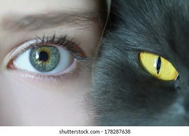 human and feline eyes