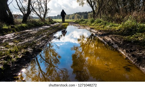 Human figure on off-road track. Tree mirroring in water close-up. Man silhouette. Muddy bumpy field path in spring landscape. Forest in background. Reflection of a blue sky and white clouds in puddle.