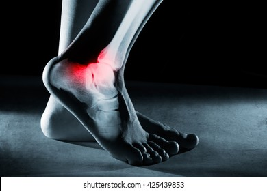 Human foot ankle and leg in x-ray, on gray background. The foot ankle is highlighted by red colour.