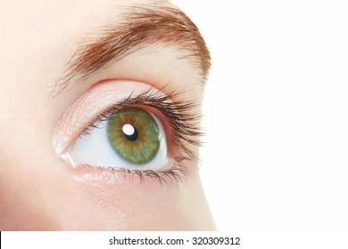 Human, green healthy eye macro on white background