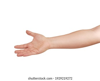 human hand and arm isolated on white. Body language Gesture for asking something or to be ready to get something