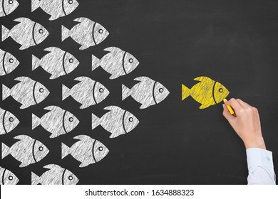 Human Hand Drawing Leadership Concepts with Fishes on Chalkboard Background