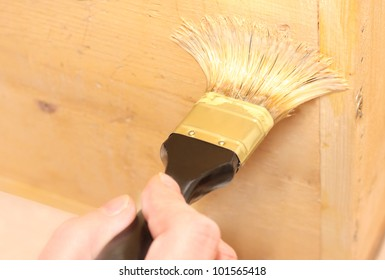 Human hand holding a brush applying a luc varnish paint or enamel on a wooden surface, selective focus on a bristle