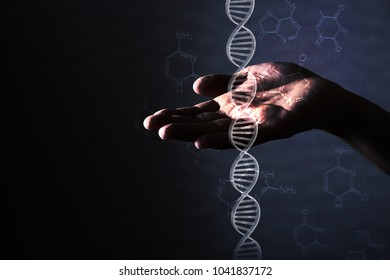 human hand holding DNA molecule