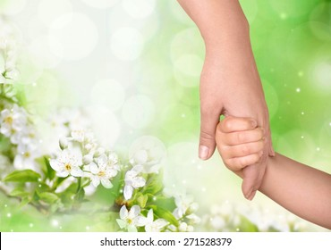 Human Hand, Holding Hands, Child.