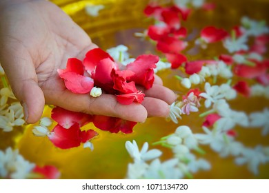 Human hand holding red rose petals with jasmine blossom in water bowl background selective focus on hand
