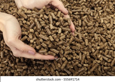 Human hand holding solid wooden pellets