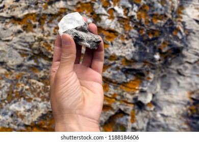 human hand holds a mineralogical sample of limestone with mica on the background of a rocky surface