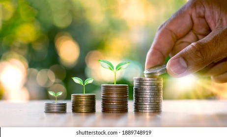 Human hands holding coins and plants sprouting on the coin pile of financial ideas and business growth.