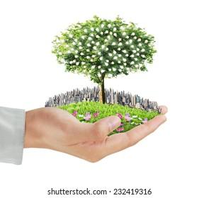 Human hands holding a tree,light bulb