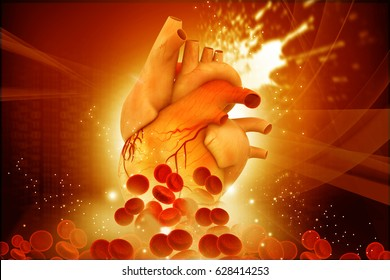 Human heart with blood cells on abstract  background