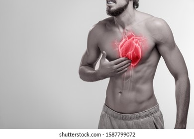 Human heart, man holding his hand on chest area