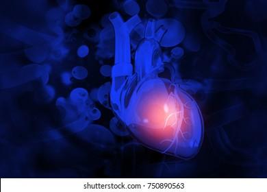 Human heart on scientific background.3d illustration