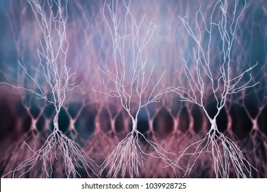 Human hippocampus neurons, computer reconstruction, 3D illustration. Damage of hippocampus is involved in development of Alzheimer's disease, other form of dementia, memory loss, epilepsy, depression