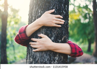 Human hugging big tree color of hipster tone selective soft focus, concept protect environment