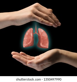 A human lungs between two palms of a woman on black isolated background. The concept of a healthy lungs.