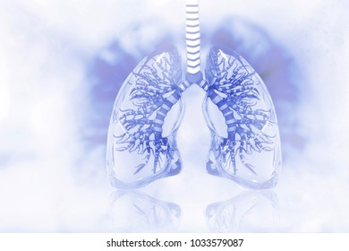 Human lungs on scientific background. 3d illustration