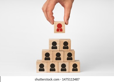 Human resource management and recruitment business