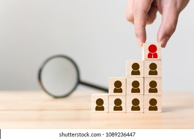 Human resource and talent management and recruitment business concept, Hand putting wood cube block on top staircase and magnifying glass, Copy space