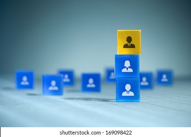 Human resources, team composition, team configuration, teamwork, cooperation and team leader (CEO) concepts.