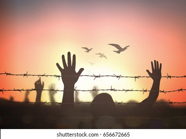 Human right day concept: Silhouette refugee hands raising and barbed wire on autumn sunset background