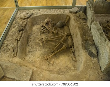 human skeleton lies in the ground in the grave. archaeological find.