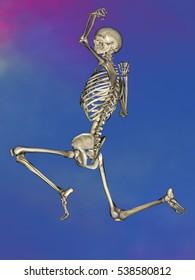 Human skeleton M-SK-POSE M4ay-28-4, 3D Model