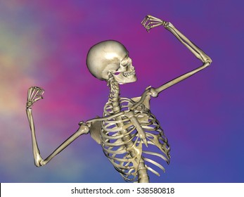 Human skeleton M-SK-POSE M4ay-28-7, 3D Model