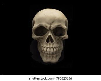 Human Skeleton Skull Isolated On black Background