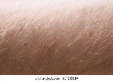 Human skin and hair close up macro