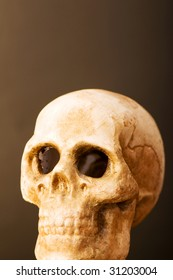 Human skull against dark background
