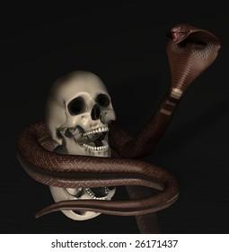 human skull with cobra snake