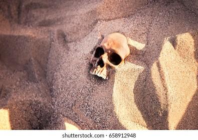 Human Skull in the Desert